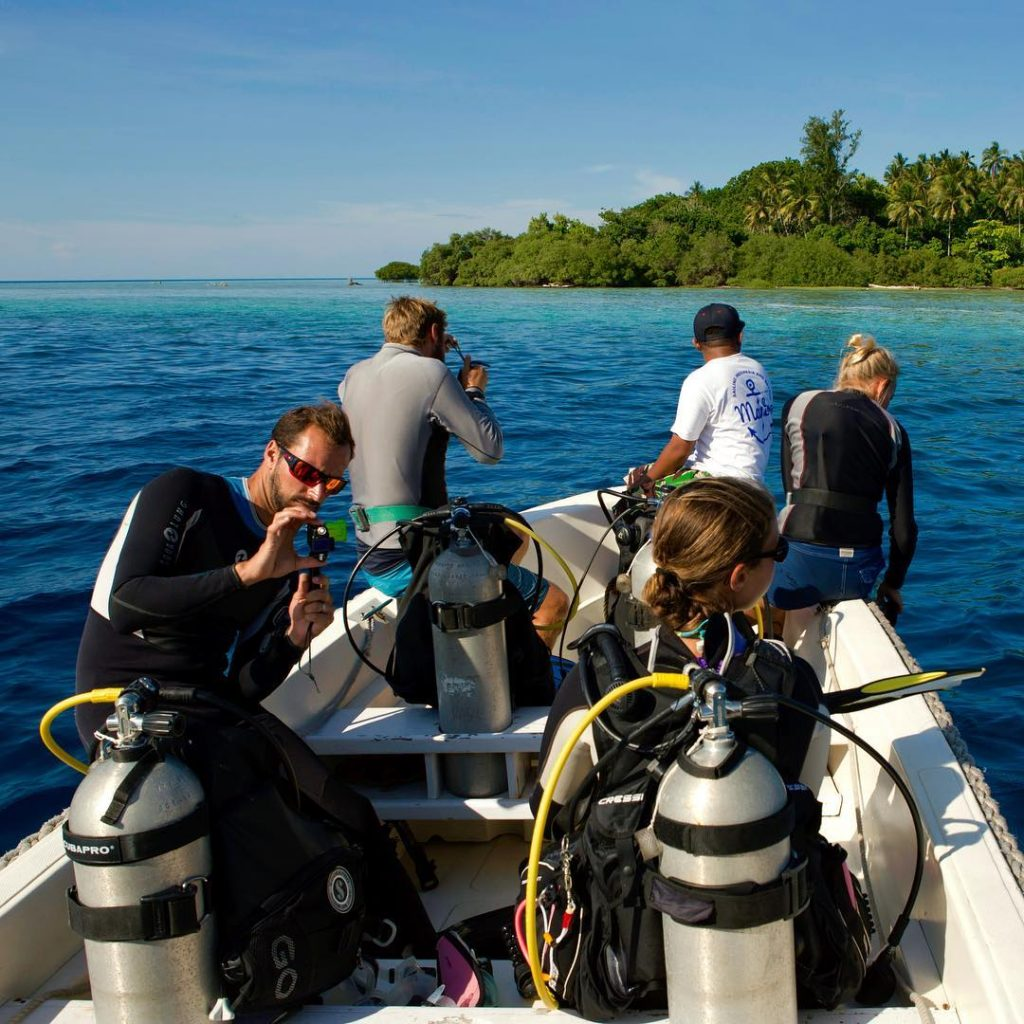 Komodo Diving Liveaboard Story in Flores Frontier