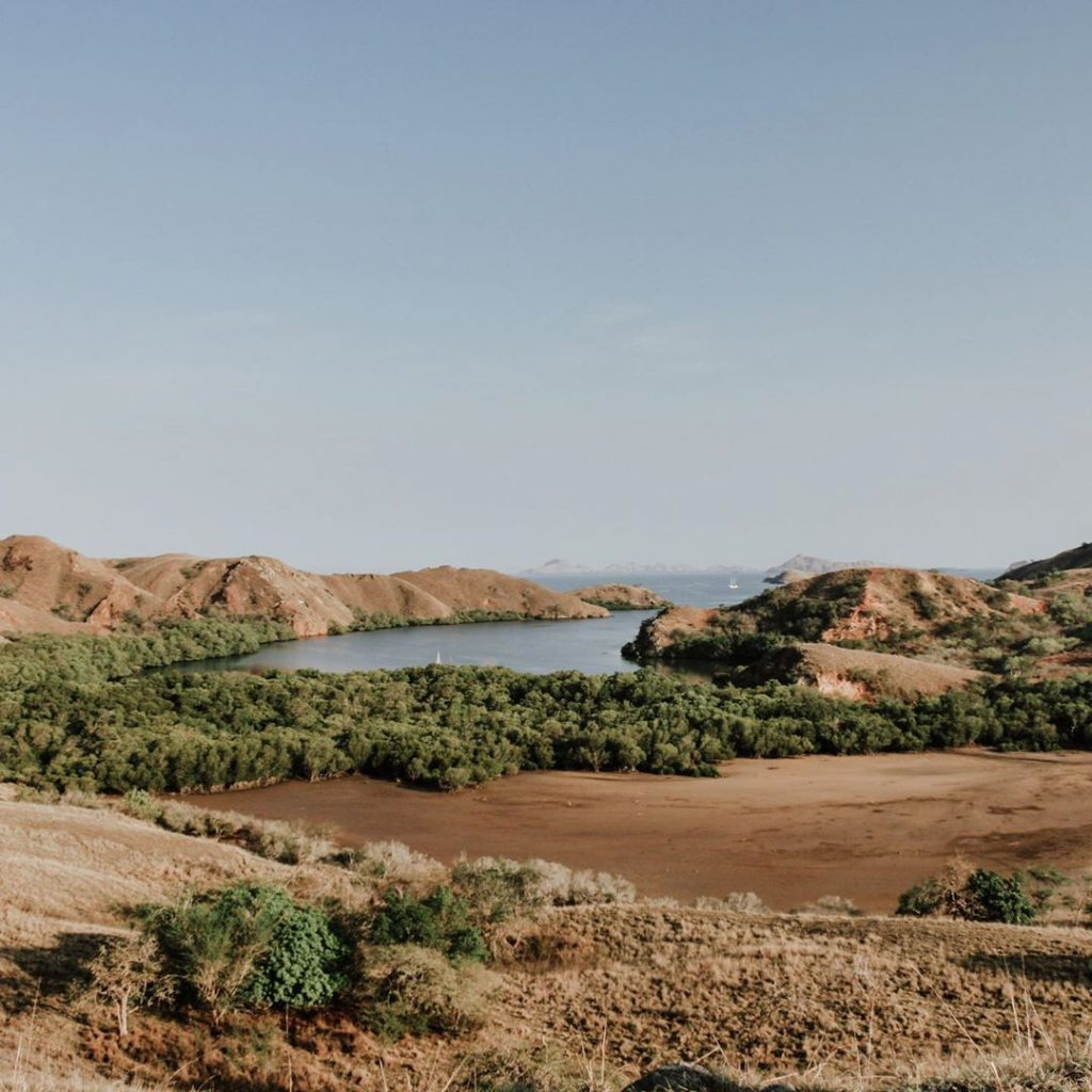 Lost in Komodo Dragon Island